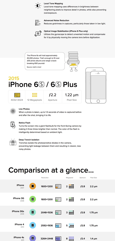 infographic-03